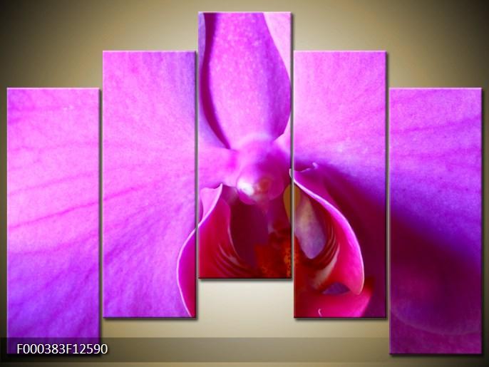 Obrazy kvetov