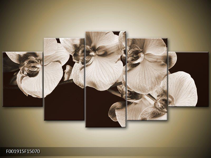 Viacdielne obrazy päťdielnej 5D