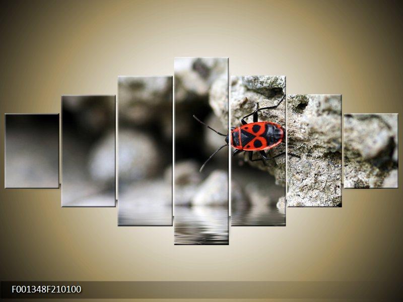 Viacdielny moderný obraz sedemdielny