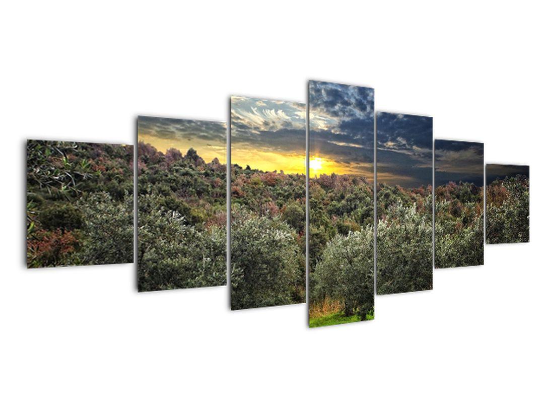 Obraz - zelený sád